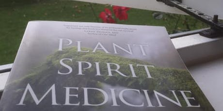 Introduction into Plant Spirit Medicine, Alison Gayek, USA tickets