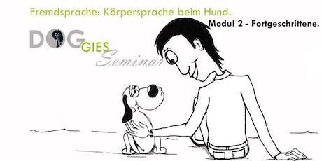 "DOGGIES Seminar: ""Körpersprache beim Hund"", Modul 2 (Fortgeschrittenenlevel) tickets"
