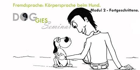 "DOGGIES Seminar: ""Körpersprache beim Hund"", Modul 2 (Fortgeschrittenlevel) Tickets"