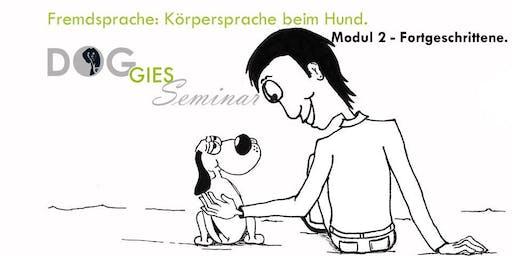 """DOGGIES Seminar: """"Körpersprache beim Hund"""", Modul 2 (Fortgeschrittenenlevel)"""