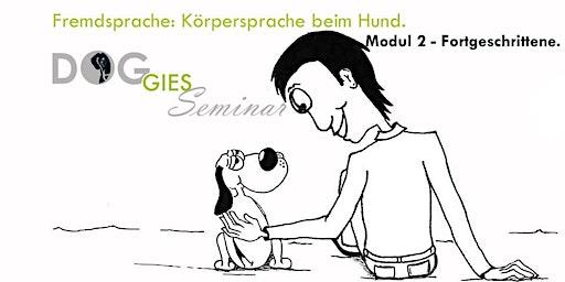 """DOGGIES Seminar: """"Körpersprache beim Hund"""", Modul 2 (Fortgeschrittenlevel)"""