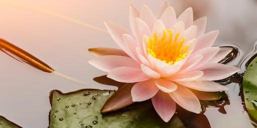 Mindfulness Meditation Monday