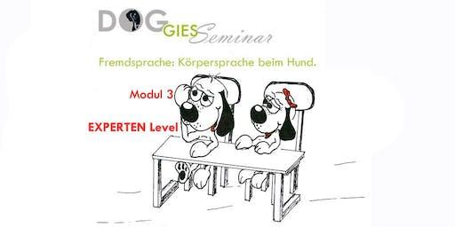 """DOGGIES Seminar: """"Körpersprache beim Hund"""", Modul 3 (EXPERTEN Level)"""