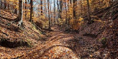 Joy Gleghorn Nature Preserve Hike