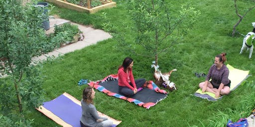 SUMMER YOGA ON THE LAWN