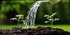 Watering the Garden 2019/20 - The Infinite Expanding Desert
