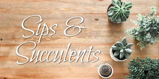 Sips & Succulents: Birch Box Planter