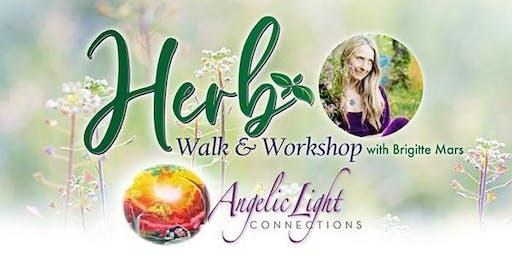 Herb walk and workshop with Brigitte Mars