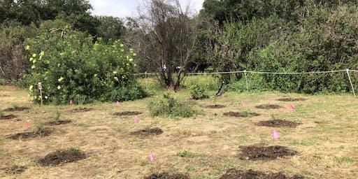 August 24th Irvine Regional Restoration with OCH
