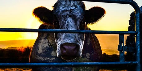 Movie Night: Cowspiracy: The Sustainability Secret tickets