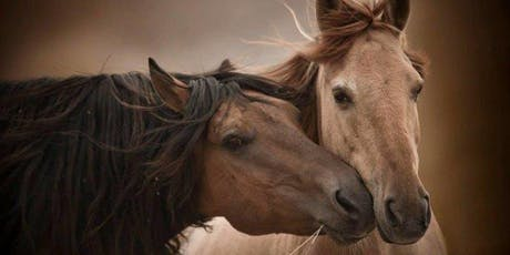 Carolyn Resnick Method Liberty Training®Clinic/Wild Horse Observation at Return to Freedom's American Wild Horse Conservation tickets