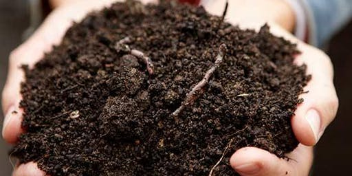 Workshop on household composting