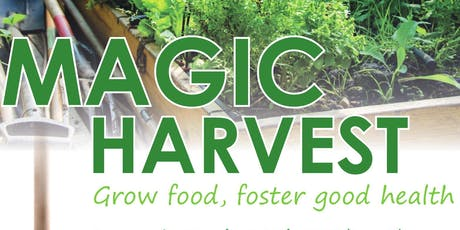 Magic Harvest - Learn to grow food in 1x1 plot tickets