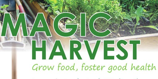 Magic Harvest - Learn to grow food in 1x1 plot