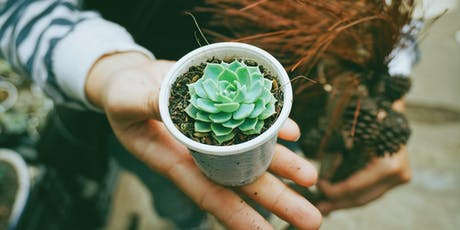 Succulent and cactus gardening for kids tickets