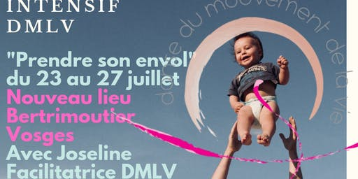 """Intensif DMLV """"Prendre son envol dans les Vosges"""""""