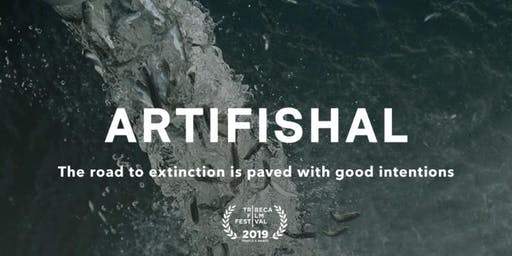 Artifishal Screening by Patagonia