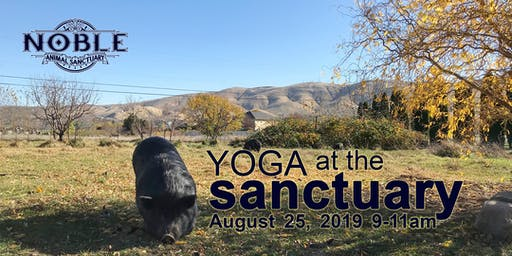 Yoga at the Sanctuary
