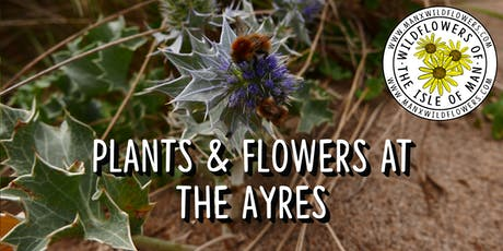 Plants & Flowers at The Ayres tickets