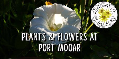 Plants & Flowers at Port Mooar tickets
