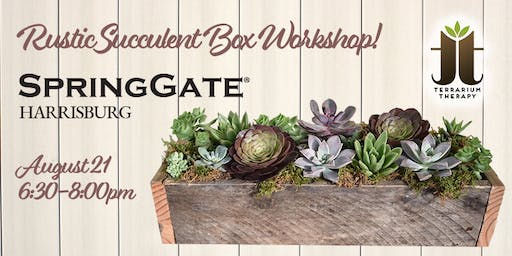 Rustic Succulent Box Workshop at Spring Gate Vineyard and Winery