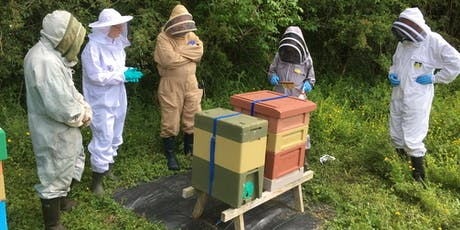 Border Beekeepers Winter Course tickets