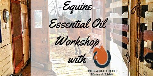 Equine Raindrop Workshop