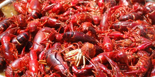 Crawfish Boil - Hosted by Zenbei Judo Team