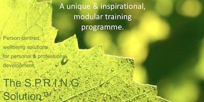 Summer 'SLOW down' Wellbeing Workshops