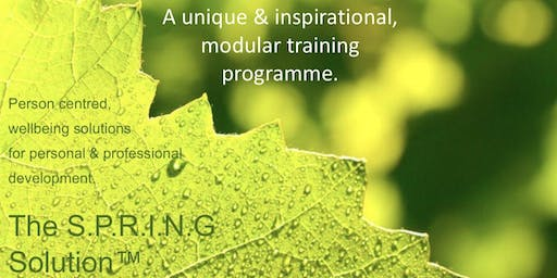 Summer 'SLOW down to LEAP forward ' 3 Hour Wellbeing Workshop