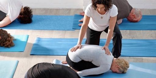 Yoga Therapy Free Group Program