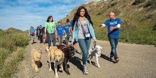 Pack Walk SA