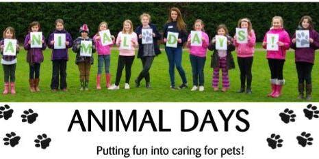 Cheltenham Animal Shelter Experience Day - Dog Session (Morning)