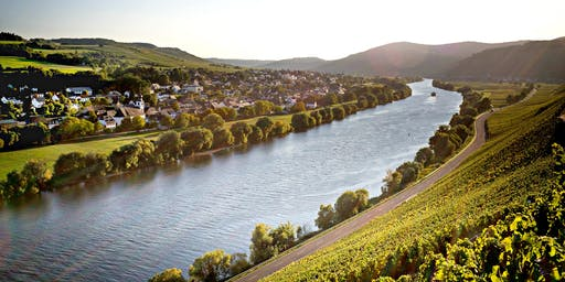 A  Trade Tasting of German Wines from the 2018 Vintage