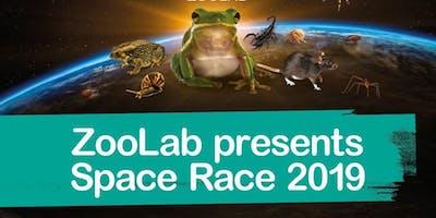 Alvaston Library Space Race animal handling workshop