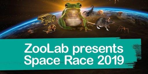 Mickleover Library Space Race animal handling workshop