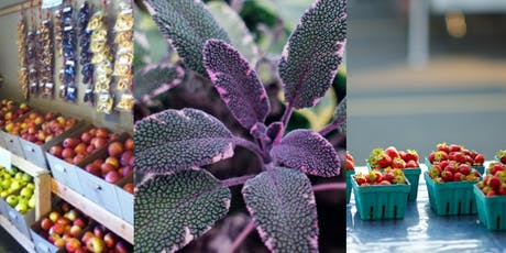 Farmers Market Tour: Purple Sage, Smith Berry Farm, Kelley Orchards tickets