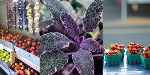 Farmers Market Tour: Purple Sage, Smith Berry Farm, Kelley Orchards