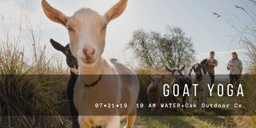 Goat Yoga at Water + Oak Outdoor Co.
