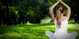Yoga + Nature Hike in Gatineau Park