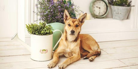 Herbs for Pets: Pet Health & Remedies tickets