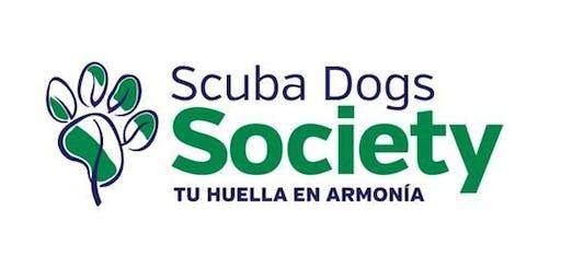 Monitoreo Microplástico Scubadogs Society, Punta Santiago Humacao