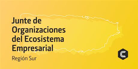 Junte de Organizaciones del Ecosistema Empresarial Región Sur | Colmena66 tickets