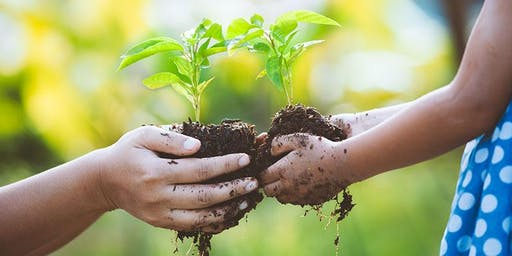 Sustainable Schools, Sustainable Communities