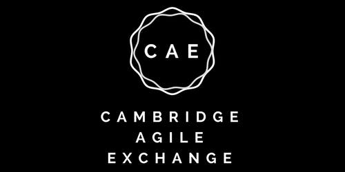 Cambridge Agile Exchange - Generating Change by Roy Marriott