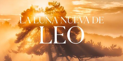 RJLEOPRER19 | Luna Nueva de Leo | 1 Agosto | Tecamachalco