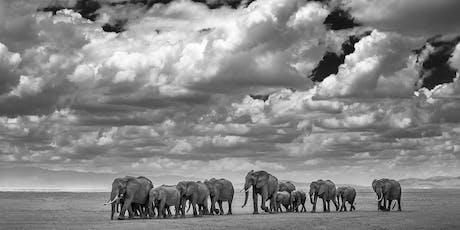 Dinner with David Yarrow at Moby's, East Hampton   tickets
