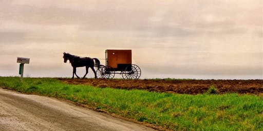 Taste and Tour Amish country (August 3rd)