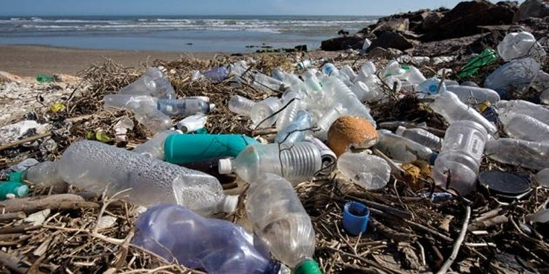 Drowning in Plastic: A Green Forum on Plastic Pollution (September 24 6:30pm-8pm)