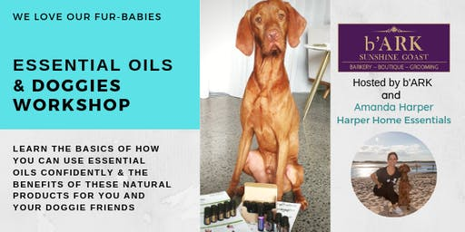 Essential oils and dogs workshop